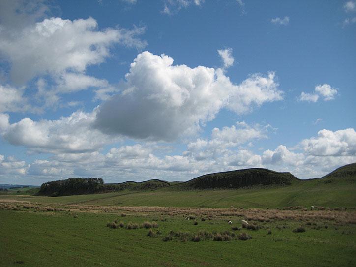 Clan McPaws View